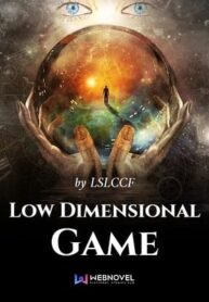 low-dimensional-game-novel-36874